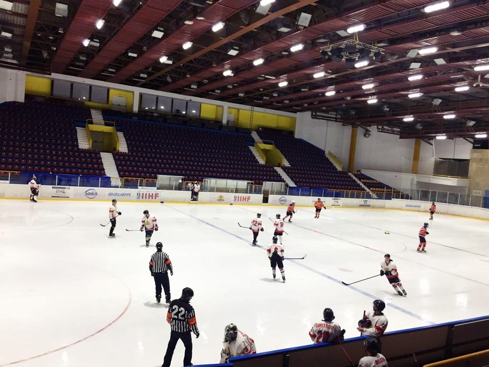Hockey game (12)