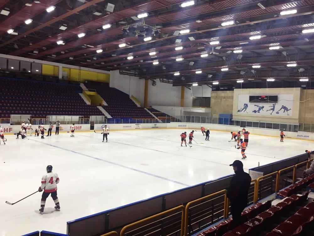 Hockey game (7)