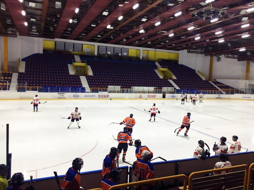 Hockey game (9)